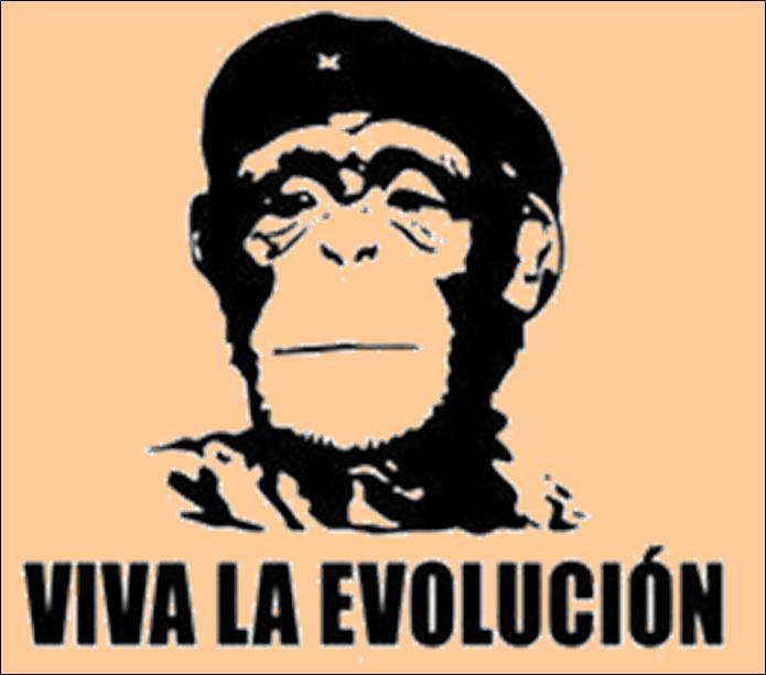 viva_la_evolucion_rectangle_bumper_sticker